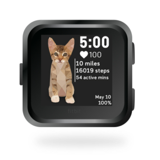 fitbit-versa-ionic-animal-clock-faces-dianas-animals-432x432-kitten