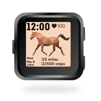fitbit-versa-animal-clock-faces-dianas-animals-432x432-horse