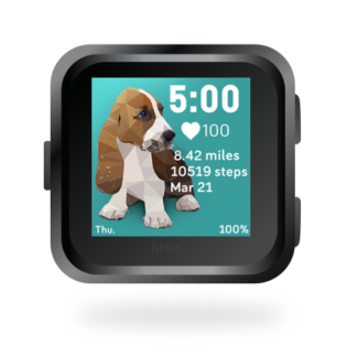 fitbit-versa-ionic-animal-clock-faces-dianas-animals-432x432-basset-hound-dog copy
