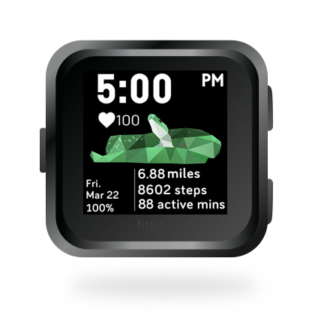 fitbit-versa-ionic-animal-clock-faces-dianas-animals-432x432-green-snake copy