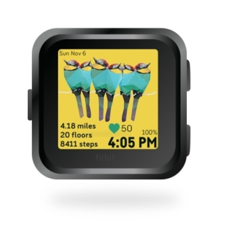fitbit-versa-ionic-animal-clock-faces-dianas-animals-432x432-holiday-bee-eaters