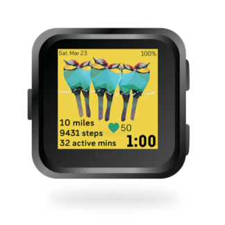 fitbit-versa-ionic-animal-clock-faces-dianas-animals-432x432-holiday-bee-eaters copy