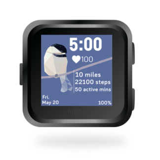 fitbit-versa-ionic-animal-clock-faces-dianas-animals-432x432-holiday-chickdee-bird