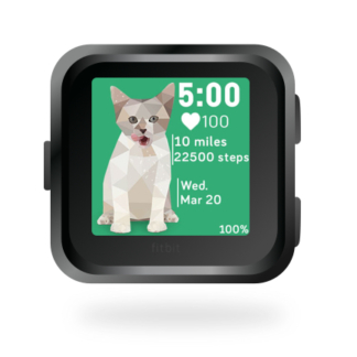 fitbit-versa-ionic-animal-clock-faces-dianas-animals-basset-432x432-cat