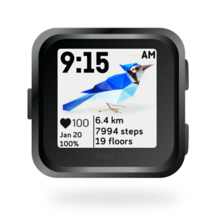 fitbit-versa-ionic-animal-clock-faces-dianas-animals-432x432-blue-jay