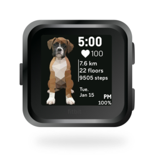 fitbit-versa-ionic-animal-clock-faces-dianas-animals-432x432-boxer