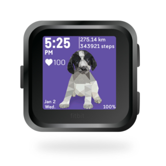 fitbit-versa-ionic-animal-clock-faces-dianas-animals-432x432-cocker-spaniel