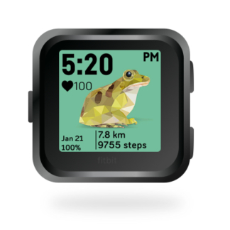 fitbit-versa-ionic-animal-clock-faces-dianas-animals-432x432-frog