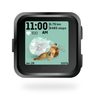 fitbit-versa-ionic-animal-clock-faces-dianas-animals-432x432-hermit-crab