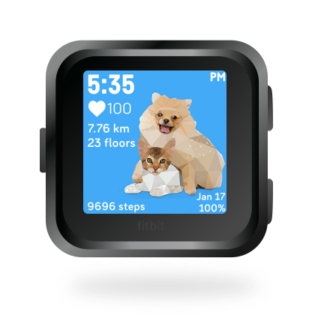 fitbit-versa-ionic-animal-clock-faces-dianas-animals-432x432-pomerianian-kitten