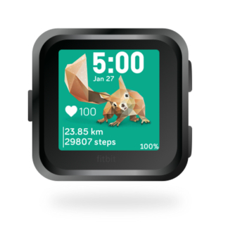 fitbit-versa-ionic-animal-clock-faces-dianas-animals-432x432-squirrel