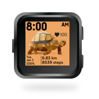 fitbit-versa-ionic-animal-clock-faces-dianas-animals-432x432-turtle