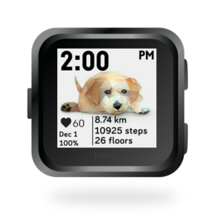 fitbit-versa-ionic-animal-clock-faces-dianas-animals-432x432-yellow-lab