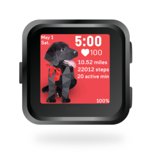 fitbit-versa-ionic-animal-clock-faces-dianas-animals-basset-432x432-black-lab