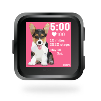 fitbit-versa-ionic-animal-clock-faces-dianas-animals-basset-432x432-corgi