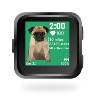 fitbit-versa-ionic-animal-clock-faces-dianas-animals-basset-432x432-pug